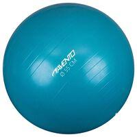 Avento Fitness/Gym Ball Dia. 55 cm Blue
