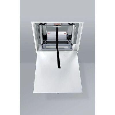 Telesteps Black Line Mini Loft Ladder