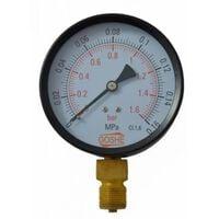 """10 Bar Manometer Pressure Gauge Side Entry M20x1,5 1/2"""" 100mm"""