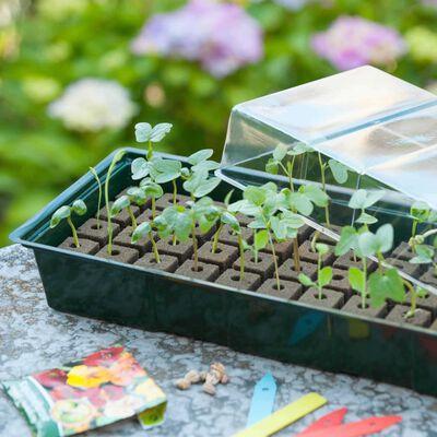 Nature Propagator Mini Kit 4x16 Cells