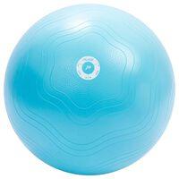 Pure2Improve Exercise Ball 65 cm Light Blue