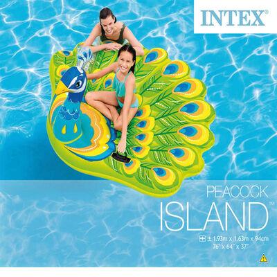Intex Pool Float Peacock Island 57250EU