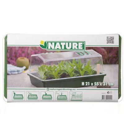 Nature Propagator 55x31x21 cm
