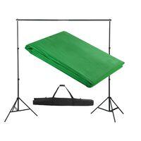 vidaXL Backdrop Support System 300 x 300 cm Green